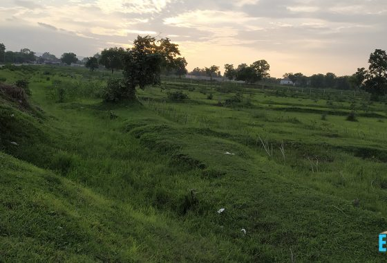 1 Acre Commercial Land For Sale Near Police Mukhyalay, Bypass Road Karanja Gondia
