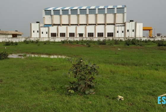 6000 Sqft Residential Plot For Sale Beside Krida Sankul Marartoli Gondia